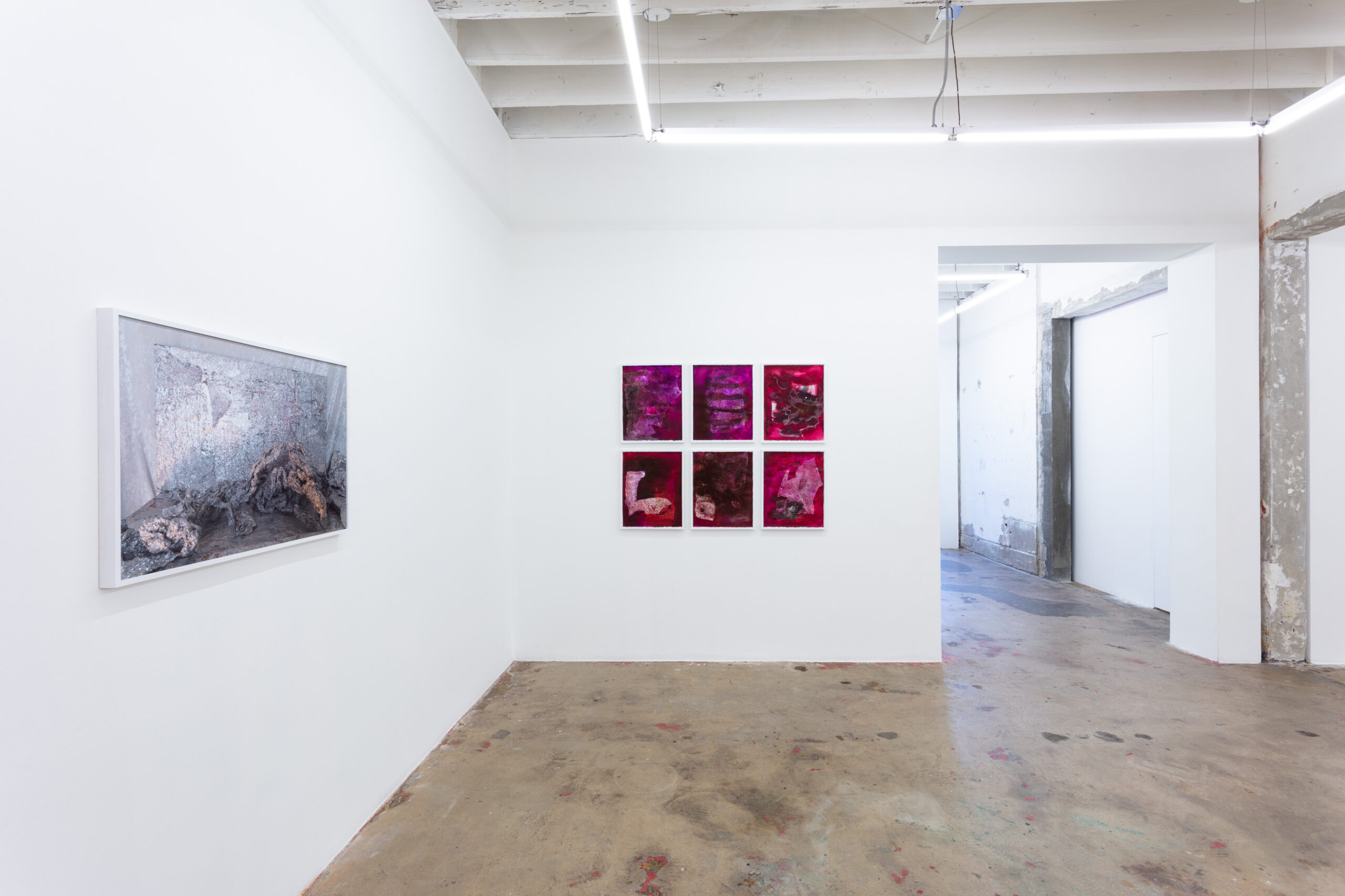 Anna Betbeze, Forms Like Dreams, installation view