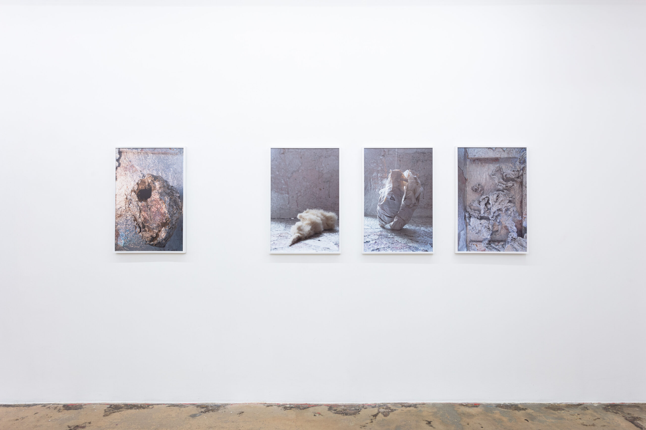 Anna Betbeze, Forms Like Dreams installation view