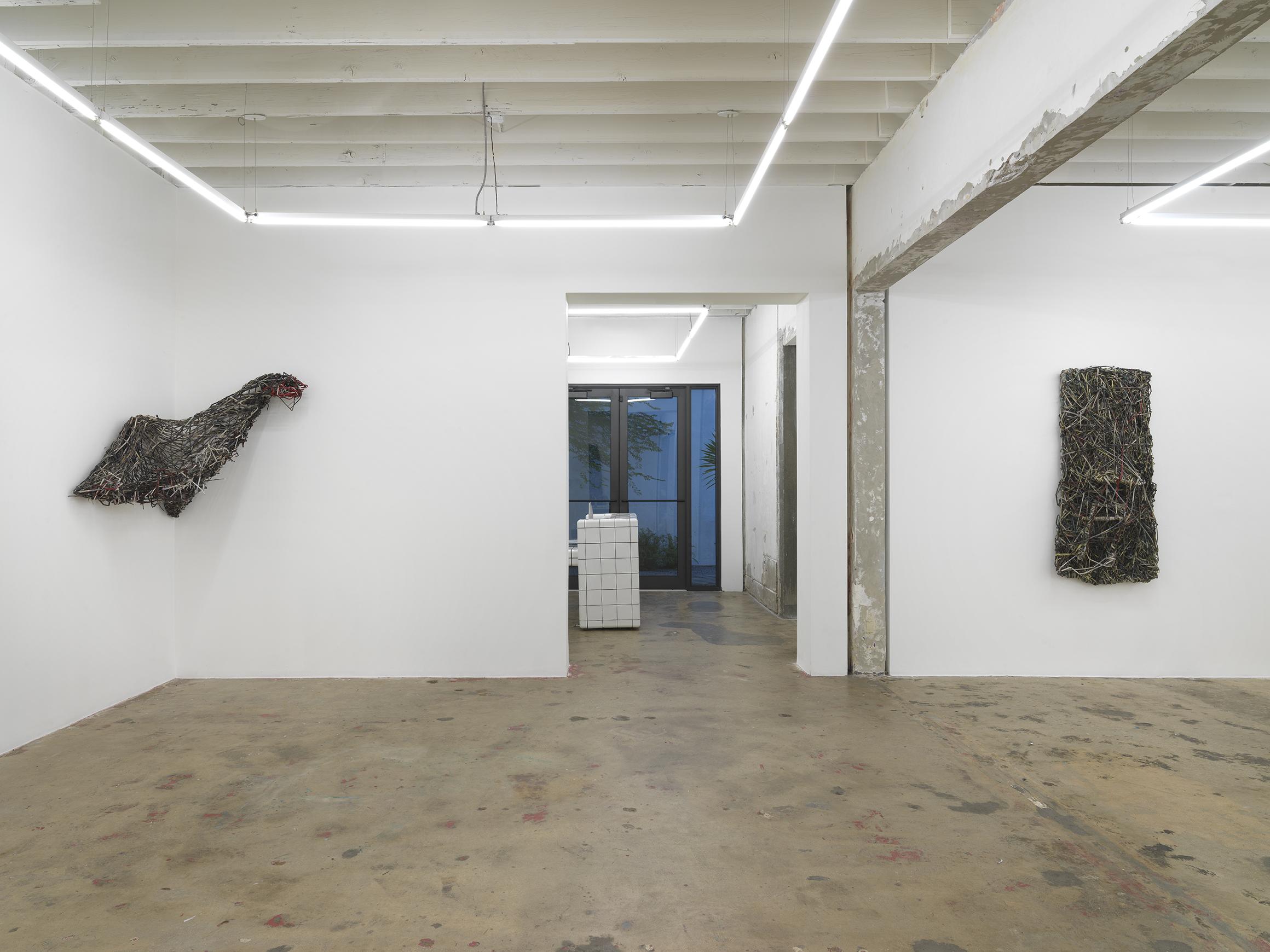 Savannah Knoop, Earthling installation
